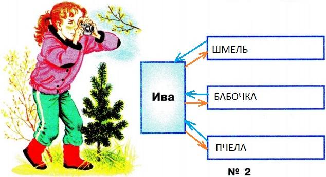 Невидимые нити в весеннем лесу (схема №2)