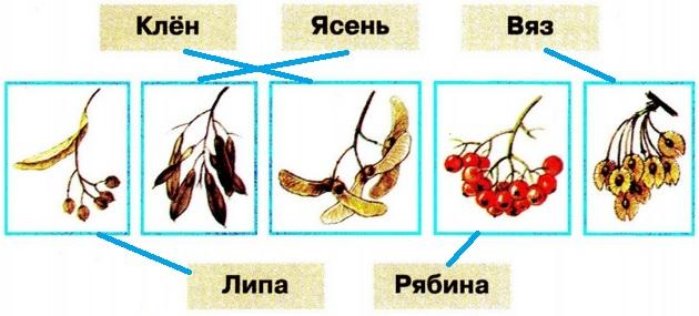 okrugauchij-mir-str-12-1