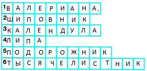 okrugauchij-mir-str-16-2
