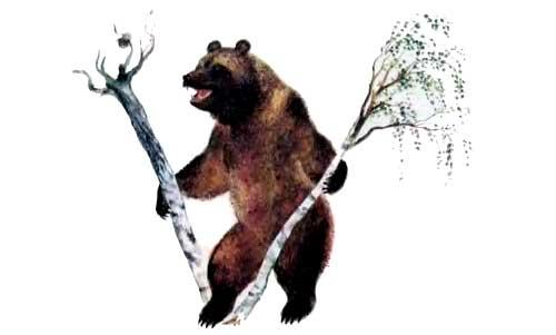 Ушинский - рассказы о животных с картинками