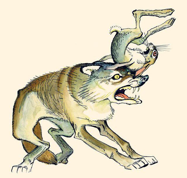 Картинки к рассказу мамина сибиряка сказка про храброго зайца