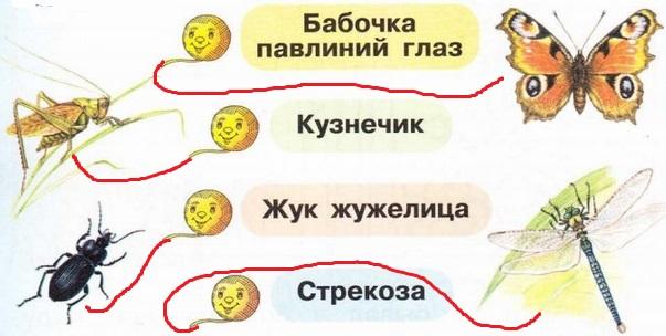 gdz-po-okrugauchemu-miru-str-18-1