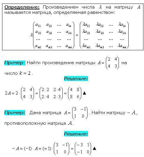Правило умножения матрицы на число