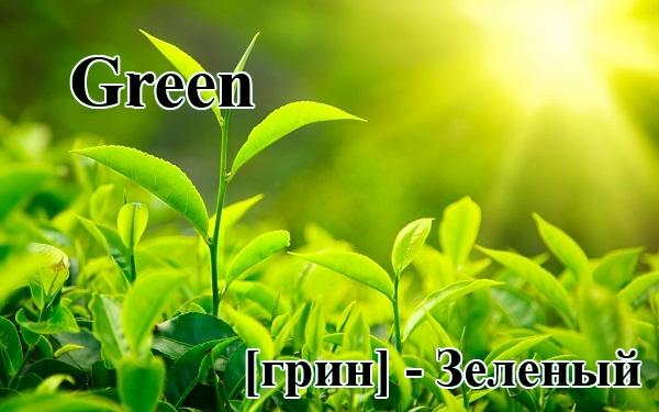 Зелёный по-английски