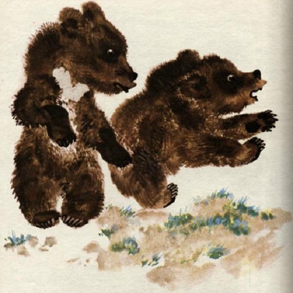 Медвежата - озорники