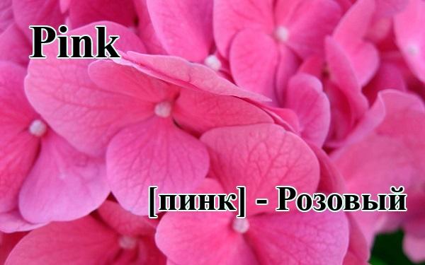 Розовый по-английски