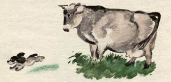 Томка и корова