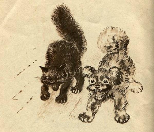 Черный кот и пёс