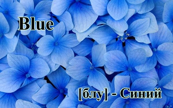 Синий и голубой на английском языке