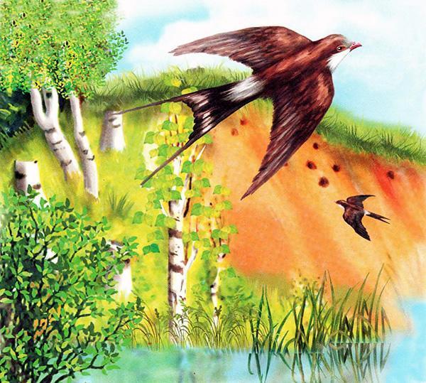 """Иллюстрация к рассказу """"Лесные домишки"""""""
