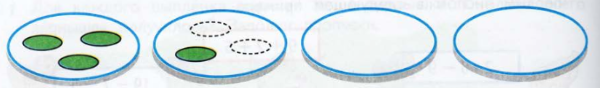 Огурцы на тарелке