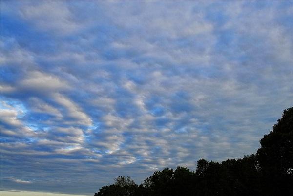 Высоко-слоистые облака