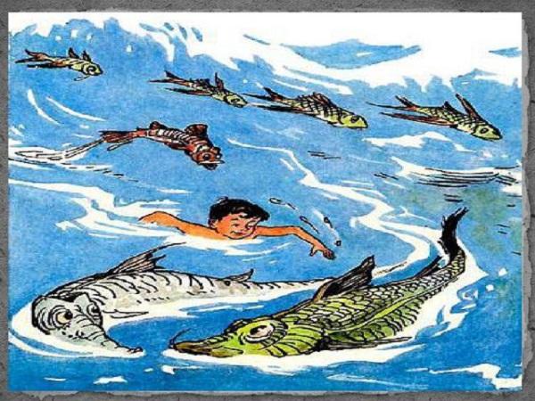 Мишутка в море