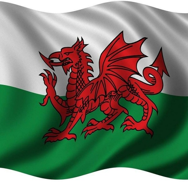 Символ Уэльса