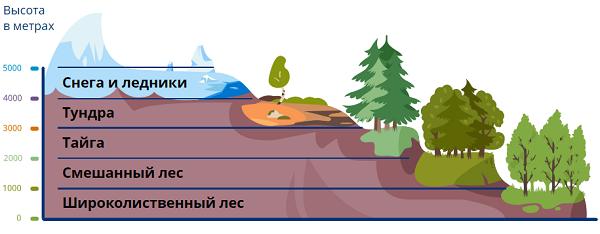 Природные зоны в горах