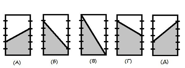 Пять одинаковых прямоугольника