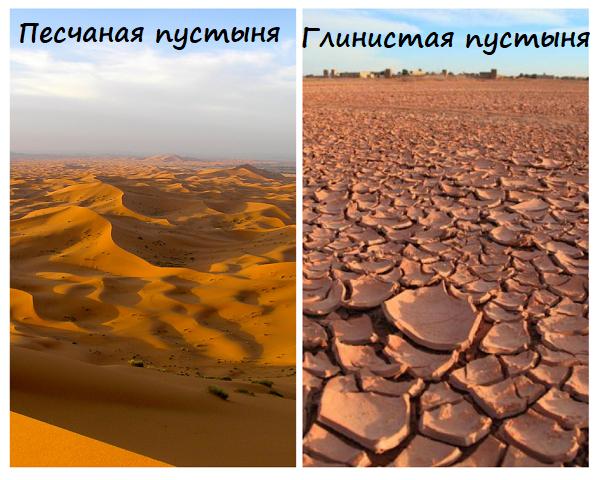 Виды пустынь