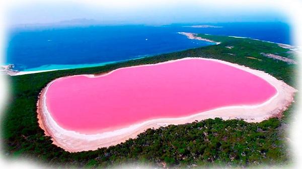 Розовое озеро Хилер