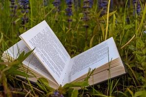 Список литературы на лето после 4 класса