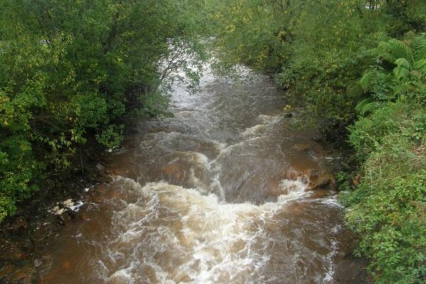 Река Куин
