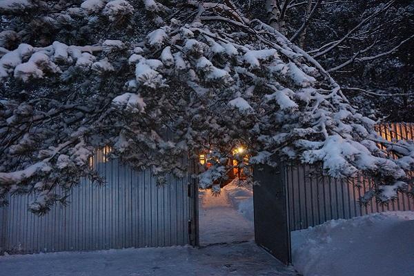 Раскрытые ворота сторожки