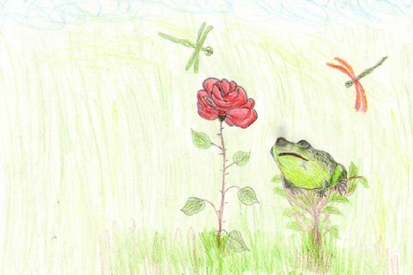 Жаба и роза