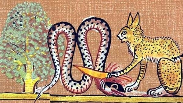 Бог Ра в образе кота и змей Апол